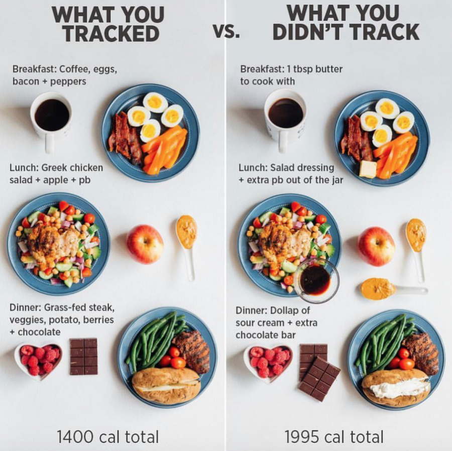 what you tracked for weight loss and what you didn't track